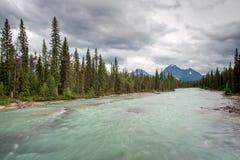 Scenic river in Jasper National Park Stock Photography