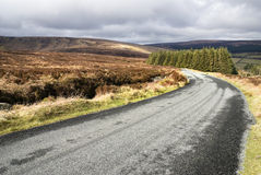 Scenic Road. In Dublin Mountains Royalty Free Stock Images