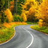 Scenic road in autumn forest Royalty Free Stock Images
