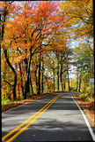 Scenic road autumn leaves Royalty Free Stock Photo