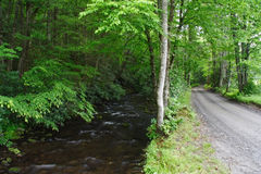 Scenic Road & Creek Royalty Free Stock Photography