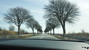 Scenic road in Denmark Stock Image