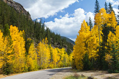 Scenic Road In Colorado Fall Aspens Stock Photos