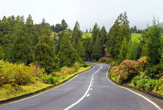 Scenic road on island Sao Miguel, the Azores Stock Image