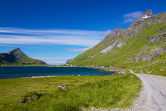 Scenic road on Lofoten Royalty Free Stock Photos