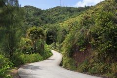 Scenic road on Mount Zimbvabve Stock Photo