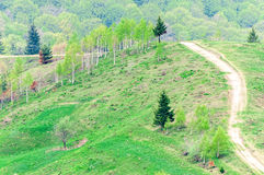 Scenic road in mountains Stock Images