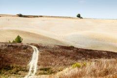 Scenic Road in Tuscan Countryside. Near Montalcino, Tuscany, Italy Royalty Free Stock Photos