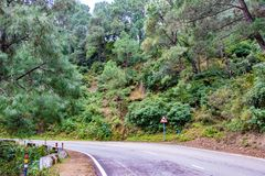 Scenic road through the valley of banikhet dalhousie himachal pradesh covered with mountain and trees. Driving uphill scenic road. Travel concept stock photos