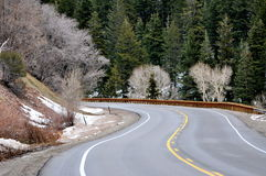 Scenic roadway in pine tree mountains . Stock Image