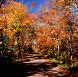 Scenic Roadway - Superior National Forest Royalty Free Stock Photos