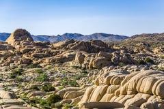 Scenic Rocks In Joshua Tree National Park Stock Image