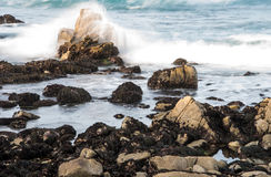 HDR Rocky Coastline Along the 17 Mil Drive Stock Images