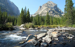 Scenic rocky mountain stream Royalty Free Stock Image