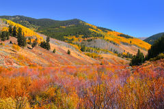 Scenic Rocky mountains Stock Image