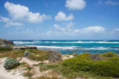 Scenic Rottnest Seascape Royalty Free Stock Images