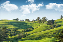 Scenic rural Australia stock photo