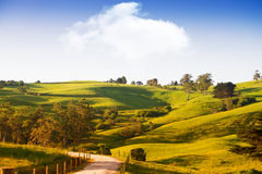 Scenic rural Australia. Beautiful scenic farm landscape in South Gippsland, Victoria, Australia stock photography