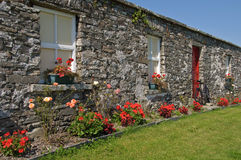Scenic rural irish cottage with bicycle and roses Stock Photos