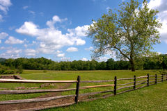 Scenic Rural Landscape with Meadow and Fence. Scenic rural American landscape with a wood post fence enclosing a grass meadow with a big old tree near a wooded Royalty Free Stock Photos