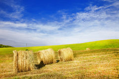 Scenic rural landscapes of Tuscany Royalty Free Stock Images