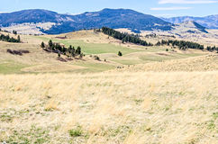 Scenic Rural Montana Stock Photos