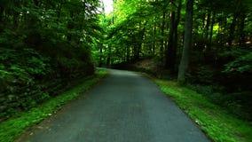 Scenic Rural Road 2 stock video