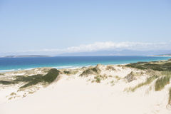 Scenic sand dunes Bay of Fires Tasmania Stock Photography