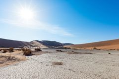 Scenic sand dunes and cracked clay pan in Sossusvlei, Namib Naukluft National Park, best tourist and travel attraction in Namibia. Adventure and exploration in Stock Image