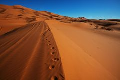 Sand desert royalty free stock photography