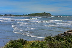 Scenic Seal Colony Tauranga Bay in New Zealand Stock Image