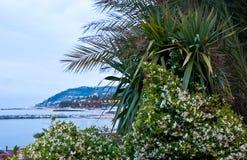 The scenic seashore Stock Photo