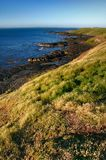 Scenic Shoreline. Rugged shoreline with grass, rocks and deep blue water Stock Photos