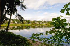 Scenic shoreline. A view of the scenic shoreline along Seward Park in South Seattle, Washington State, USA Stock Photos