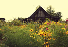 Scenic shot of the old barn buildings Stock Photography