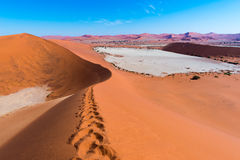 The scenic Sossusvlei and Deadvlei, clay and salt pan surrounded by majestic sand dunes. Namib Naukluft National Park, main visito. R attraction and travel Royalty Free Stock Photos