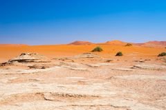 The scenic Sossusvlei and Deadvlei, clay and salt pan surrounded by majestic sand dunes. Namib Naukluft National Park, main visito. R attraction and travel Stock Photos