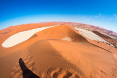 The scenic Sossusvlei and Deadvlei, clay and salt pan surrounded by majestic sand dunes. Namib Naukluft National Park, travel dest. Ination in Namibia. Fish eye Royalty Free Stock Photos