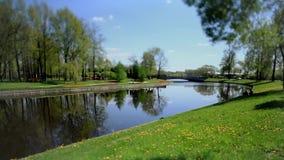 Scenic spring landscape Tilt stock video