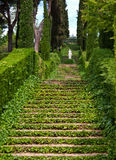 The scenic stairs. These plant-overgrown stairs and the beautiful sculpture in greek style located in one hundred years old botanical garden of Lloret de Mar stock photography