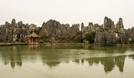 Scenic of Stone Forest Royalty Free Stock Image
