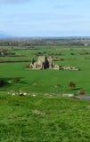 Scenic Stone Ruins of Hore Abbey Stock Photo