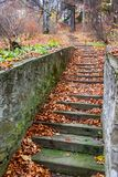 Scenic stone stairs among rusty colors foliage.  stock photography