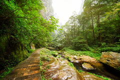 Scenic stone walkway along river. Amazing summer landscape Royalty Free Stock Photography