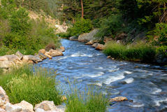 Scenic Stream Royalty Free Stock Image