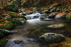 Scenic stream in autumn Royalty Free Stock Photo