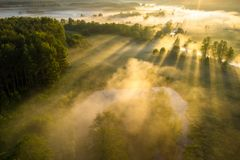 Scenic summer background. Sunbeams on river nature aerial view. Scenery sunny landscape. Amazing bright sunlight over river. Sun royalty free stock photo