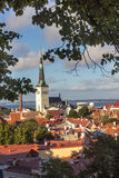 24-27.08.2016 Scenic summer beautiful aerial skyline panorama of the Old Town in Tallinn, Estonia Stock Photos