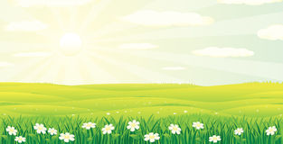 Scenic Summer Day Landscape. Vector Image Royalty Free Stock Photography