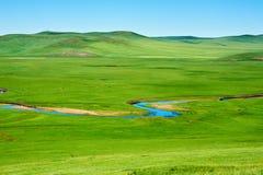The scenic of the summer grassland of Hulunbuir. The photo was taken in Hulunbuir grassland of Inner Mongolia Autonomous Region, China royalty free stock image